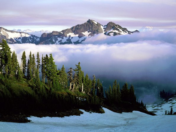 Cloud Cover, Mount Rainer National Park, Washington